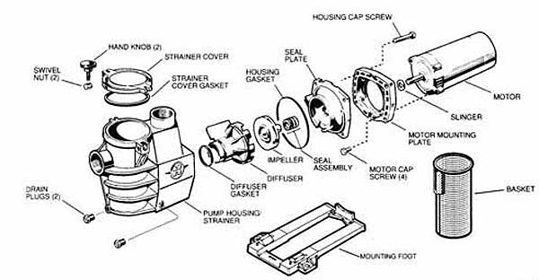 Century Pool Pump Motor Parts Diagram