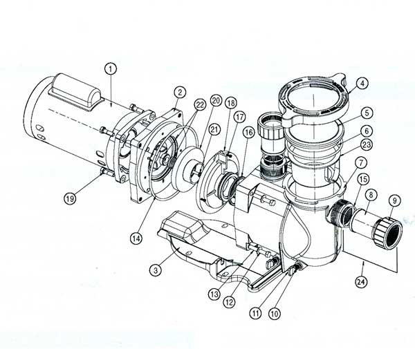 pentair pool pump wiring diagram  pentair  free engine