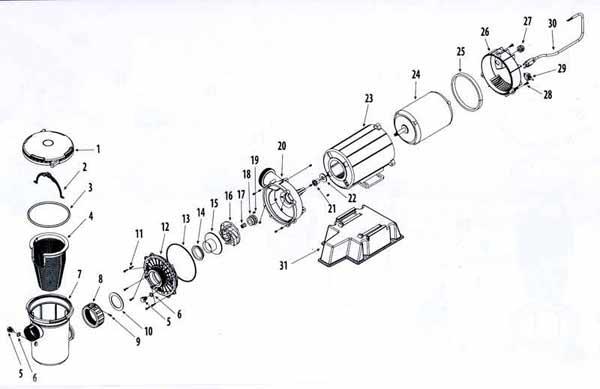 35 Waterway Pump Parts Diagram